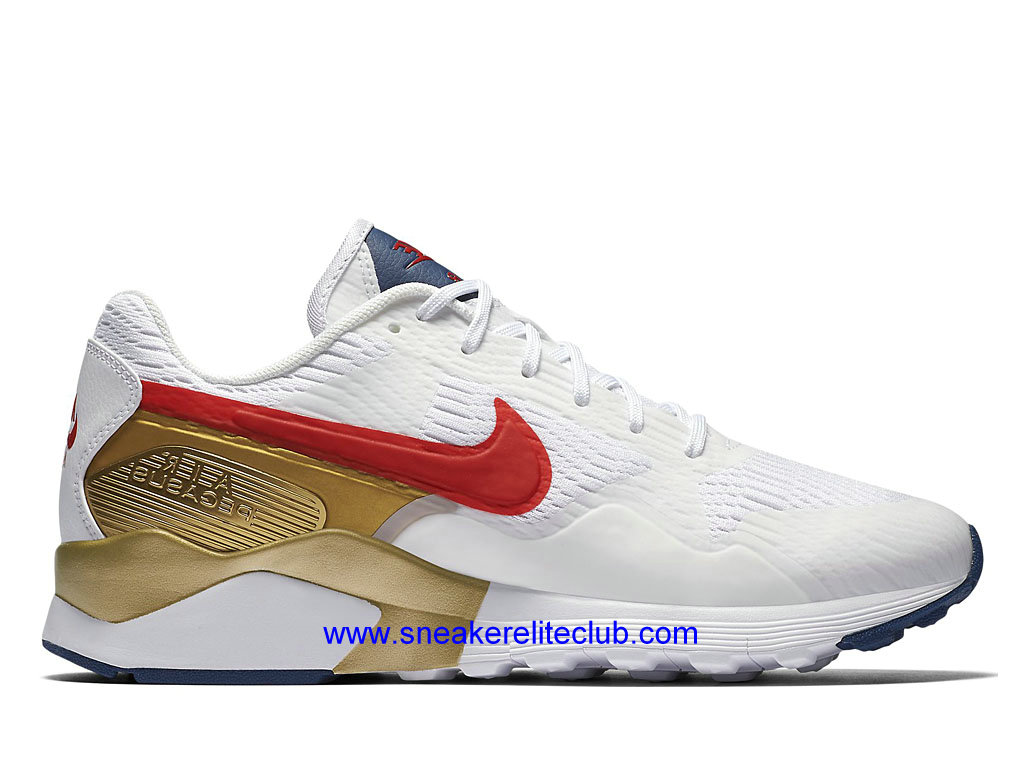 nike air max or pegasus