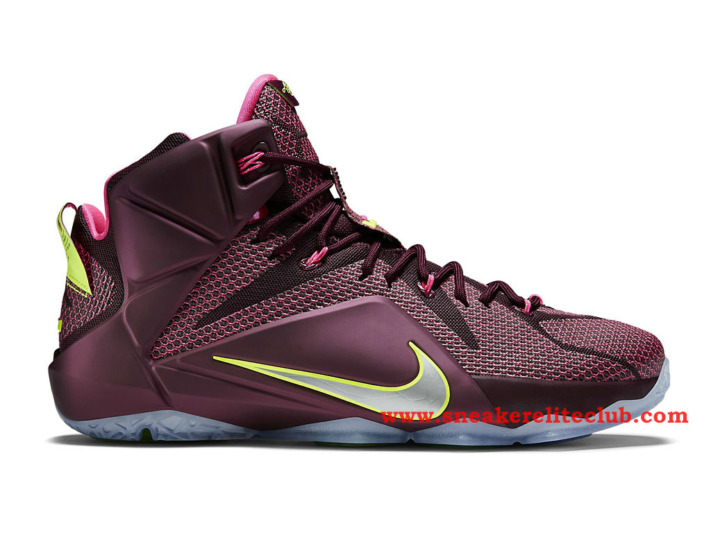 Nike lebron 12 lion heart