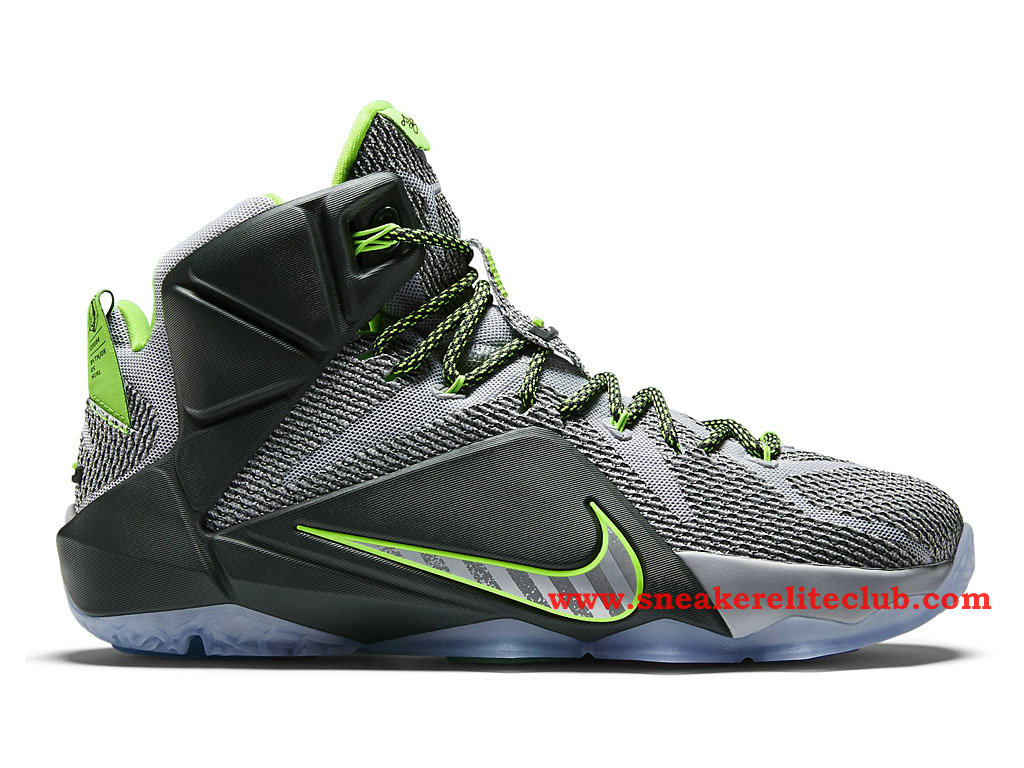 Nike Lebron 12/XII Dunk Force Chaussure Basket Pour Homme Wolf Grey/Electric Green/Reflective